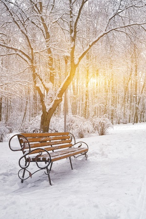 winter elements in gastonia nc